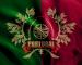 Selecção Portuguesa de Futebol Americano