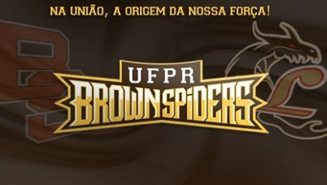 UFPR Brown Spiders